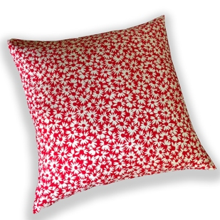 red bed daisy